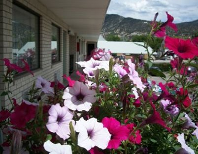 flowers in front of the manti country village motel in manti utah by LDS manti temple