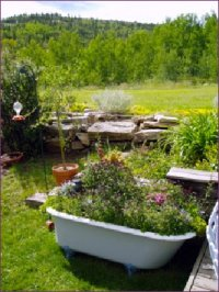 big garden with plands in a bathtub at Hooper Homestead B&amp;B