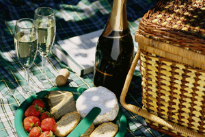 picnic with cheese