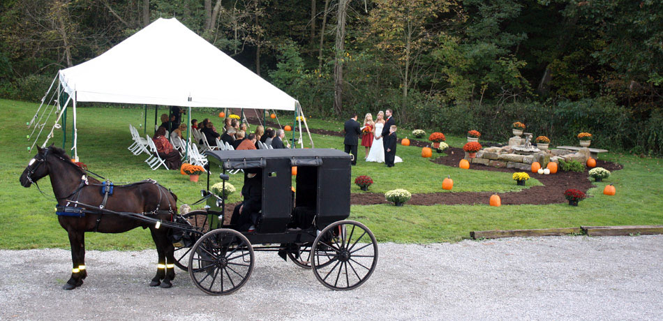 amish weddding, ohio barn wedding, amish marriage, cleveland and ohio wedding venues