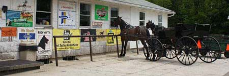 tack and farm related amish country stores