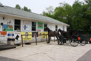 Amish Horse Shop