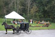 Amish wedding with hors and buggy at The Barn Inn in Ohop