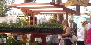 Farmers Market in Coeur d'Alene