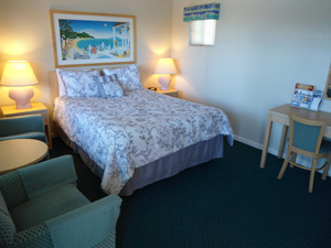 Handicap Accessible Room