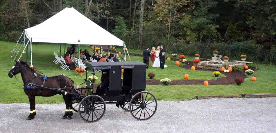 Amish Wedding | Millersburg Ohio | The Barn Inn Bed ...