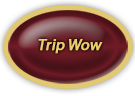 trip Wow button