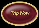 trip Wow button