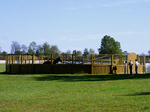 Horse Equiciser at Mercury Equine Center
