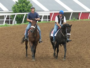men participating in extended horse training