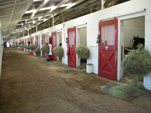 Horse Stalls at our facility