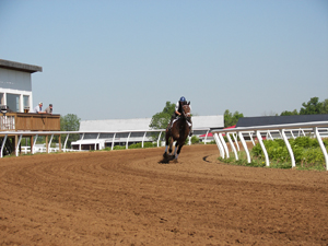Extended horse race track training