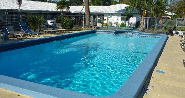 Palm Court Motel Pool