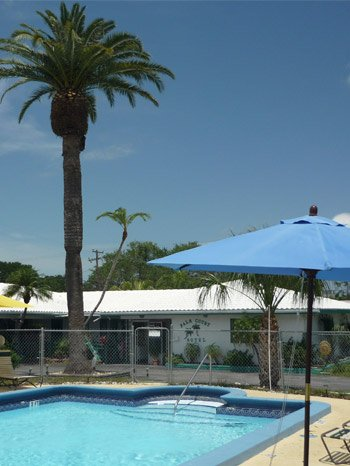 Palm Court Motel Pool Side Photo