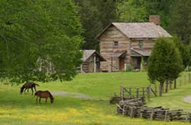Historic farm in Cades Cove with horses