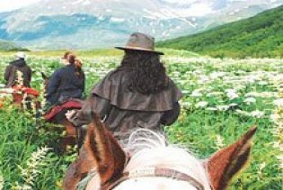 Hoseback riding through a meadow