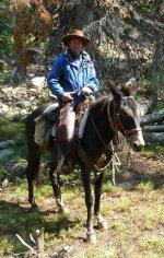 cowboy riding mule