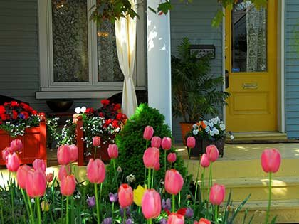 flowers on the porch in Great Lakes