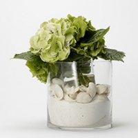 Seashells and Hydrangea Floral Arrangement