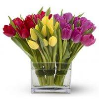 Tulips Floral Arrangement