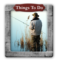 Things to Do at Country Woods Inn
