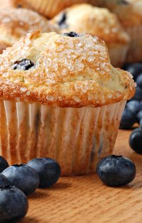 Blueberry Muffins at High Meadows Vineyard Inn