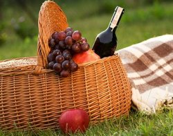 Picnic Lunch Promotion at Back Inn Time