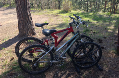 Bicycles at Swan Hill Bed and Breakfast in Polson Montana