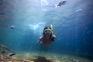 snorkeling near Kona Guest House in Kona, Hawaii