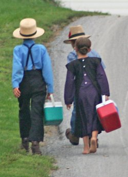 Amish Children on the Way to School