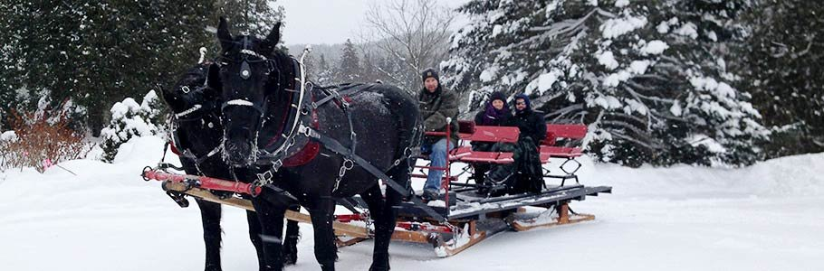 Sleigh Ride in Vermont near Adair in Bethlehem, New Hampshire