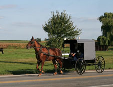 Amish Culture in Millersburg, Ohio