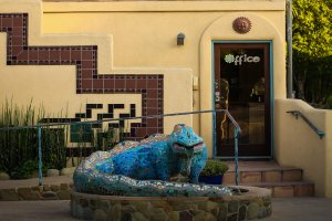 Blue Iguana in Ojai, California
