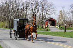 Amish in Southwest Wisconsin