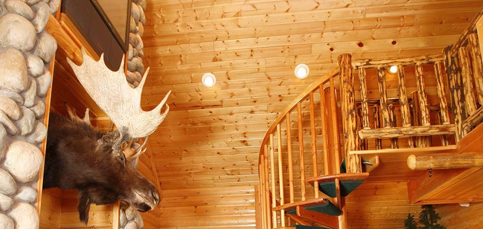 Rocky Mountain Cabin Suite At Black Swan Inn In Pocatello, ID