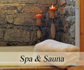 Spa and Sauna at Historic Webster House in Bay City, Michigan