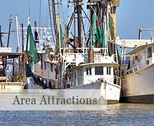 Area Attractions Near Surf Song Bed and Breakfast on Tybee Island, Georgia