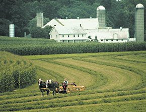 farm in Lancaster county near Emig Mansion Bed and Breakfast in York County Pennsylvania