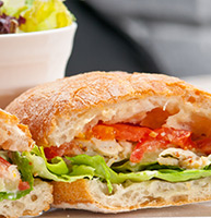 italian ciabatta panini sandwich