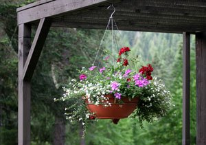 Hanging Flower Basket at Reflections Inn