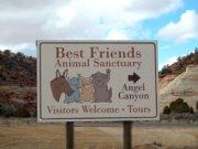 Best Friends Animal Sanctuary in Kanab Utah