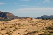 A portion of the Coral Pink Sand Dunes State Park in southwestern Utah.