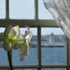 A room with a view of the lighthouse at Captain Simeon Potter House