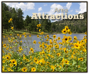 Williams Arizona Area Attractions
