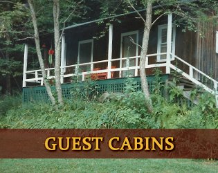 Guest Cabins at Healing Springs
