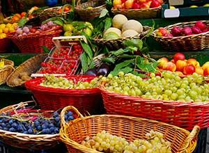 Farmer's Market in Stowe near Butler House