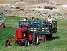 Hay Ride at K3 Guest Ranch in Cody, Wyoming