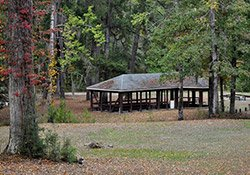 Bladon Springs State Park at Bladon Springs, AL