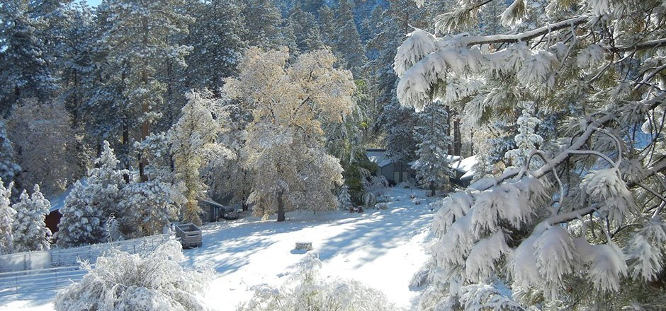 big rent and golden brochure information cottages bear lake for cabins lodging