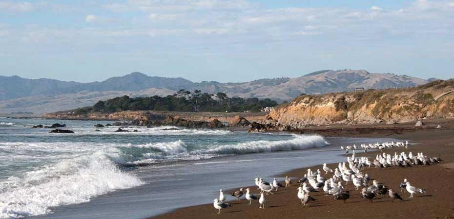 White Water Inn In Cambria California